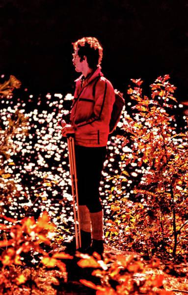 Wall Art - Photograph - Capturing Autumn Light by Steve Harrington