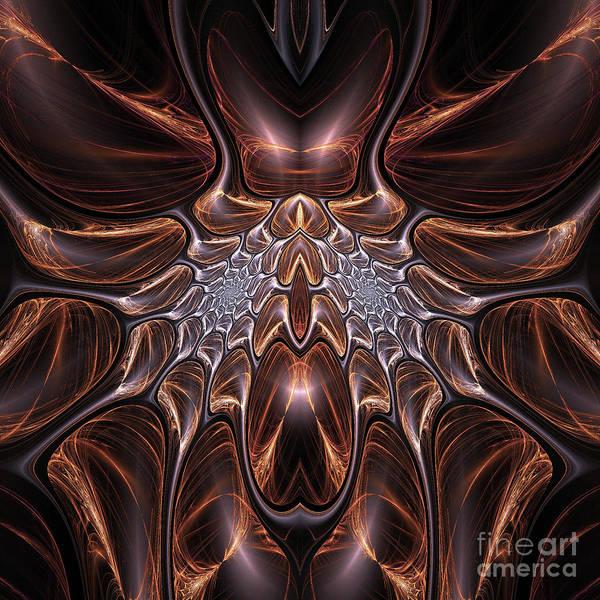 Fall Colors Digital Art - Carapace by John Edwards
