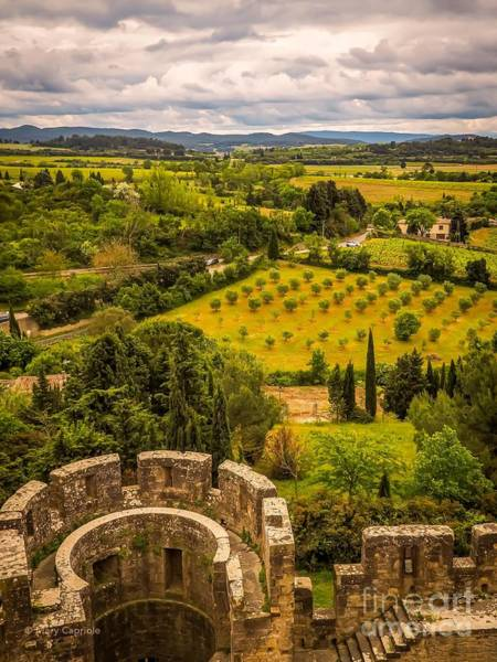 Photograph - Carcassonne by Mary Capriole