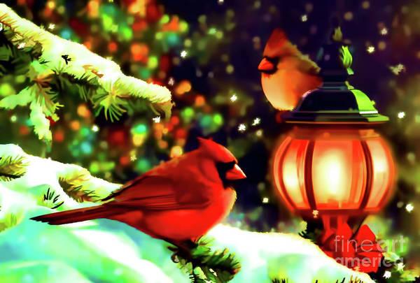 Digital Art - Cardinals At Christmas by D Hackett