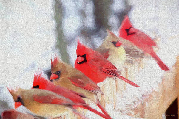 Painting - Cardinal In A Line 2809 - Painted by Ericamaxine Price