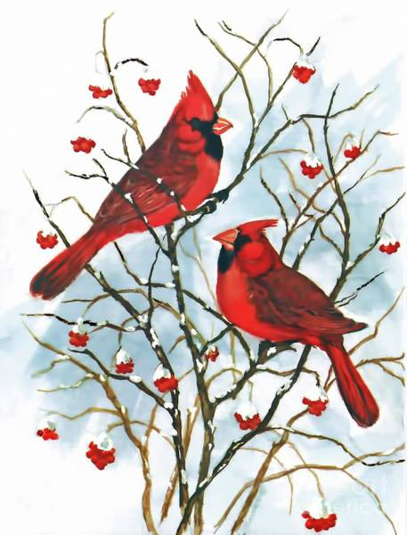 Digital Art - Cardinals In Winter by D Hackett