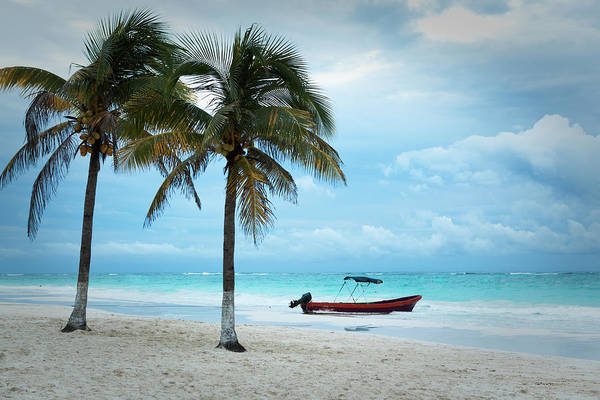 Mayan Riviera Photograph - Caribbean Beach With Palm Tree And by Yinyang