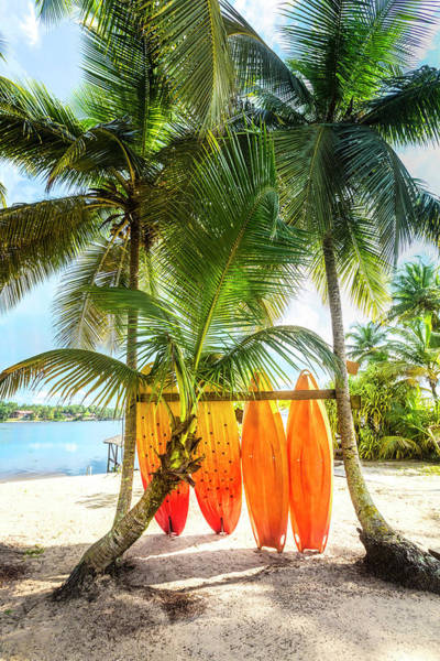 Wall Art - Photograph - Caribbean Island Mood by Debra and Dave Vanderlaan