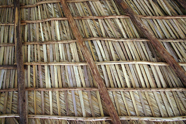 Photograph - Caribbean Thatch Roof by Rick Veldman