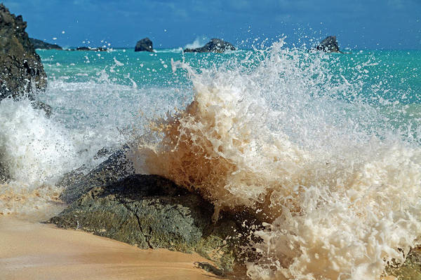 Caribbean Wave Natural Design Art Print