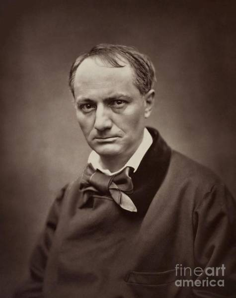 Wall Art - Photograph - Carjat Studio Portrait Of The Writer Charles Baudelaire by Etienne Carjat