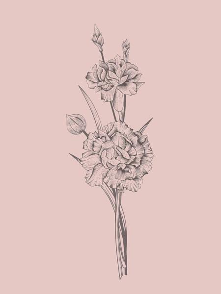 Bouquet Mixed Media - Carnation Blush Pink Flower by Naxart Studio