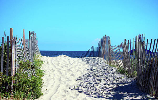 Photograph - Carolina Beachscape by Cynthia Guinn