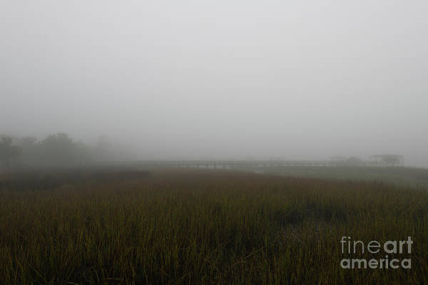 Photograph - Carolina Rain And Fog by Dale Powell