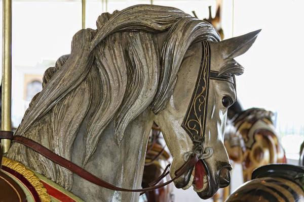 Wall Art - Photograph - Carousel Pony by Alana Thrower