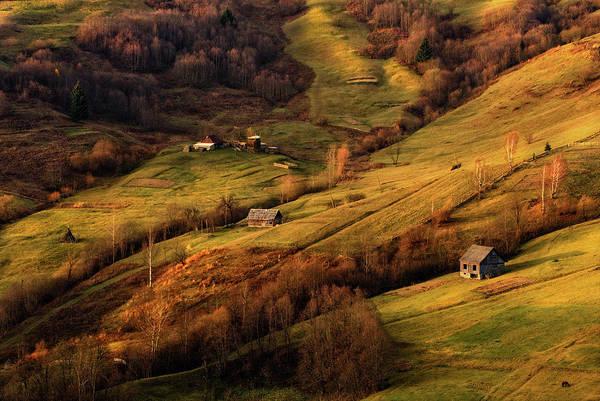 Photograph - Carpathians Pastoral by Vlad Sokolovsky
