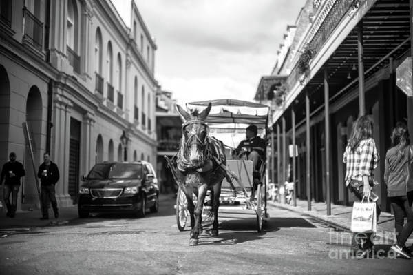 Photograph - Carriage To Jackson Square New Orleans by John Rizzuto