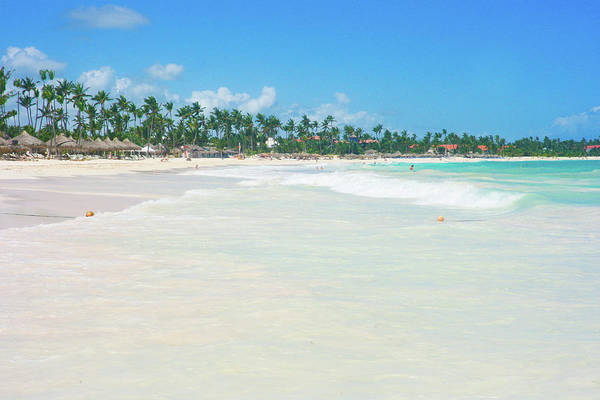 Dominican Republic Photograph - Carribean Beach Lined With Palm Trees by Raquel Lonas