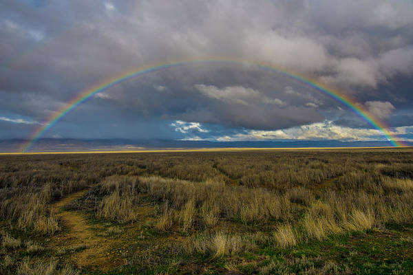 Photograph - Carrizo Plain Rainbow by Matthew Irvin