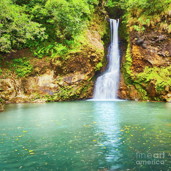 Wall Art - Photograph - Cascade Chamouze Waterfall. Mauritius by MotHaiBaPhoto Prints