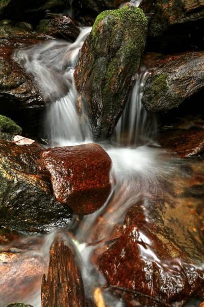Photograph - Cascade From Dill Falls by Carol Montoya