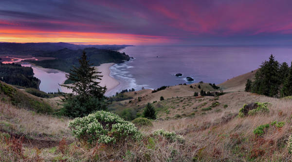 Photograph - Cascade Head Scenic Area by Leland D Howard