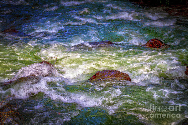 Photograph - Cascade Rapids by William Norton