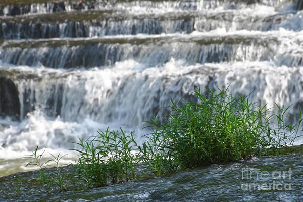 Photograph - Cascades At Burgess Falls 1 by Phil Perkins