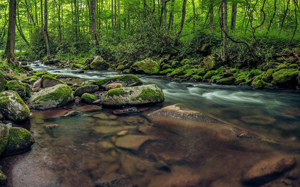 Photograph - Cascades Of The Oconaluftee by ProPeak Photography