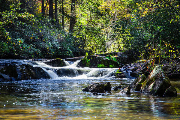 Photograph - Cascading Into The Pool by Debra and Dave Vanderlaan