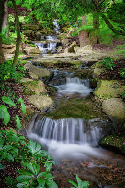 Wall Art - Photograph - Cascading Stream by Tom Mc Nemar