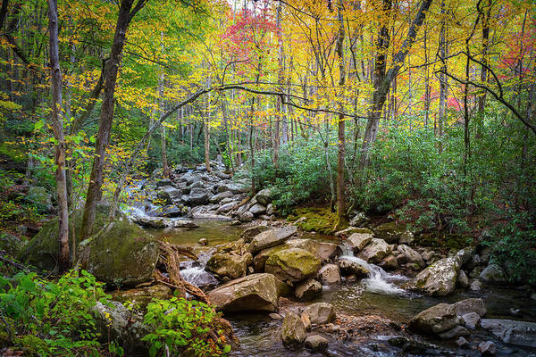 Wall Art - Photograph - Cascading Waters In Autumn by Debra and Dave Vanderlaan