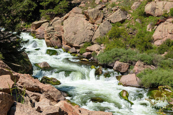Photograph - Cascading Whitewater In Eleven Mile Canyon by Steve Krull