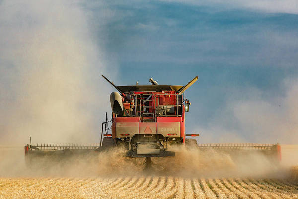 Wall Art - Photograph - Case Ih From Behind by Todd Klassy