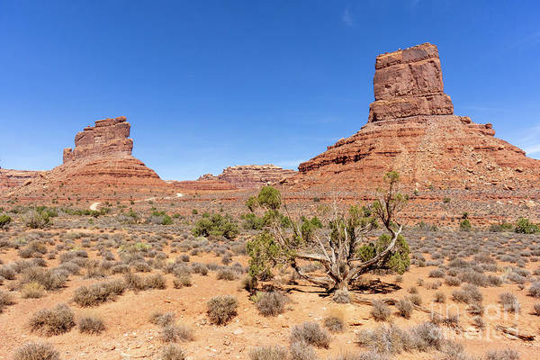Photograph - Castle Butte And Other Formations In Valley Of The Gods Near Mex by William Kuta