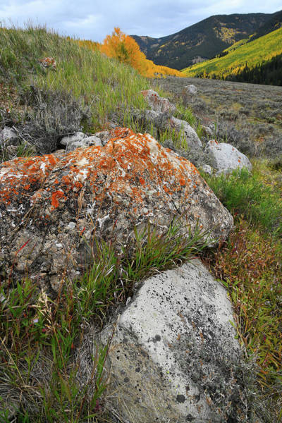Photograph - Castle Creek Road Boulders  by Ray Mathis