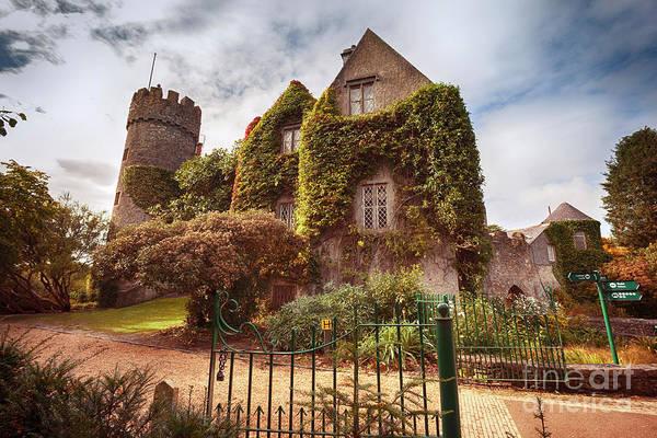 Photograph - castle near Dublin by autumn  by Ariadna De Raadt