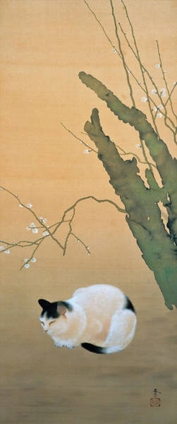 Wall Art - Painting - Cat And Plum Blossoms - Digital Remastered Edition by Hishida Shunso
