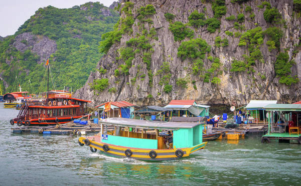 Photograph - Cat Ba Harbour by Gary Gillette