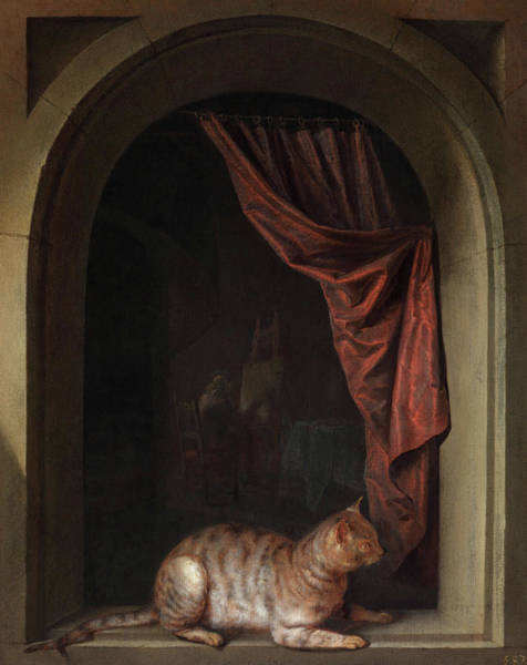 Wall Art - Painting - Cat Crouching On The Ledge Of An Artist's Atelier  by Gerrit Dou