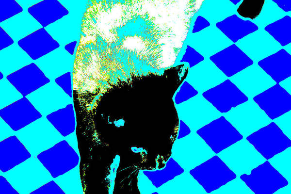Digital Art - Cat On A Blue Chessboard by Artist Dot