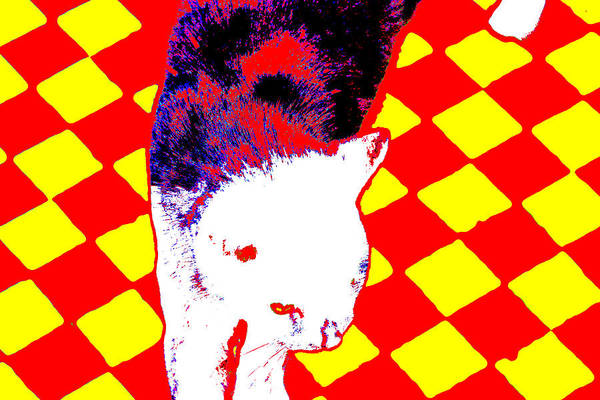 Digital Art - Cat On A Chessboard 1 by Artist Dot