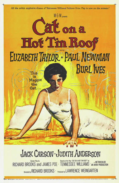 Wall Art - Photograph - Cat On A Hot Tin Roof Vintage Movie Poster 1958 by Mountain Dreams