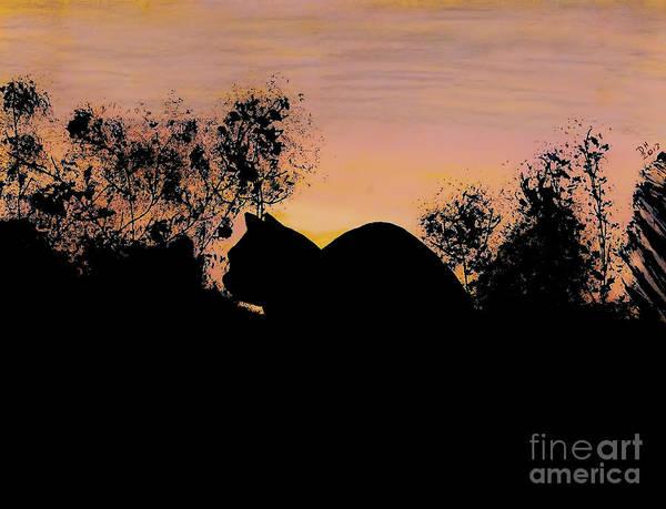 Drawing - Cat - Orange - Silhouette by D Hackett