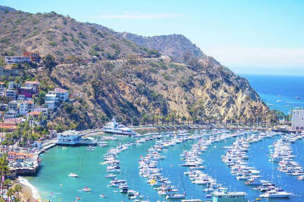 Wall Art - Photograph - Catalina Island Ariel View by Art Spectrum