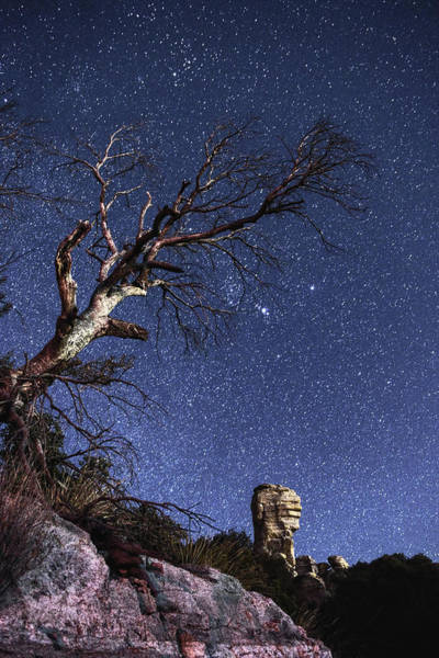 Photograph - Catalinas Starry Night by Chance Kafka