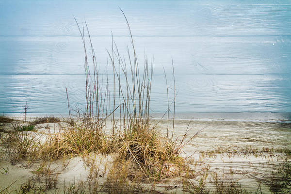Photograph - Catching The Salty Breeze by Debra and Dave Vanderlaan