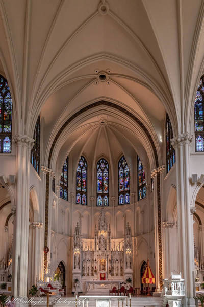 Photograph - Cathedral Basilica Of The Immaculate Conception II by Bill Gallagher