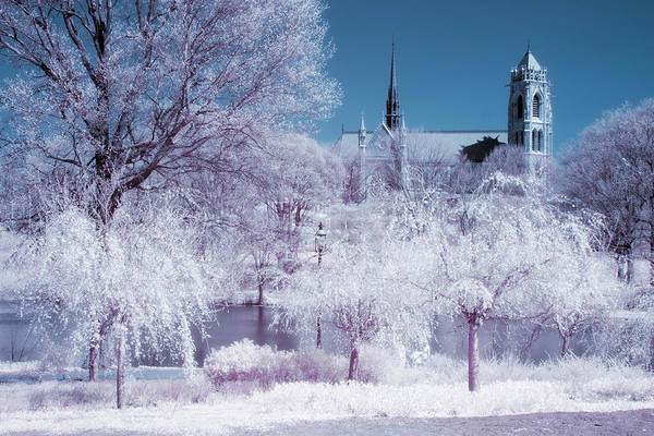 Photograph - Cathedral Basilica The Sacred Heart Ir  by Susan Candelario