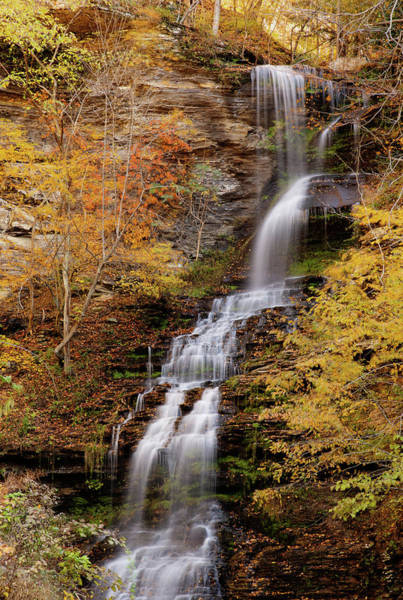 Photograph - Cathedral Falls by Pete Federico
