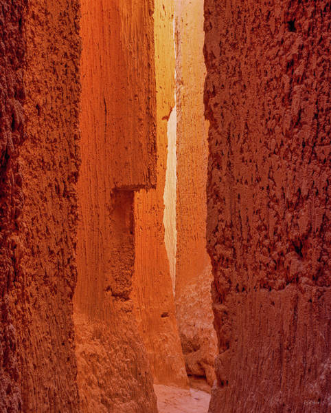 Photograph - Cathedral Gorge Canyon by Leland D Howard