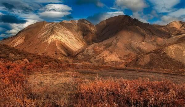 Wall Art - Photograph - Cathedral Mountain, Alaska by N P S Tim Rains