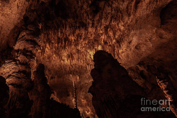Cavern Photograph - Cathedral Of Nature by Mike Dawson