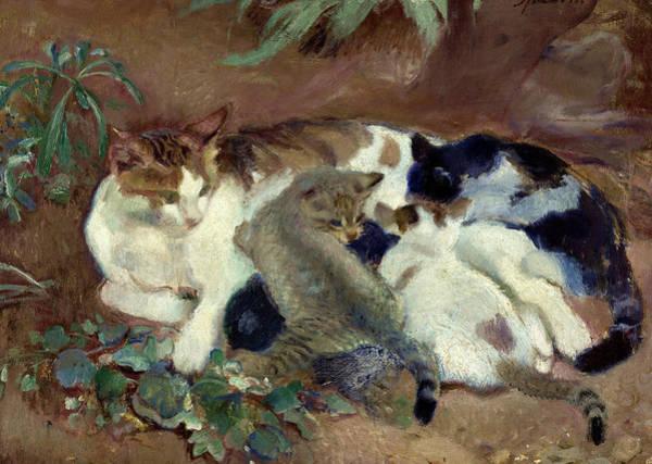 Wall Art - Painting - Cats by Armando Spadini